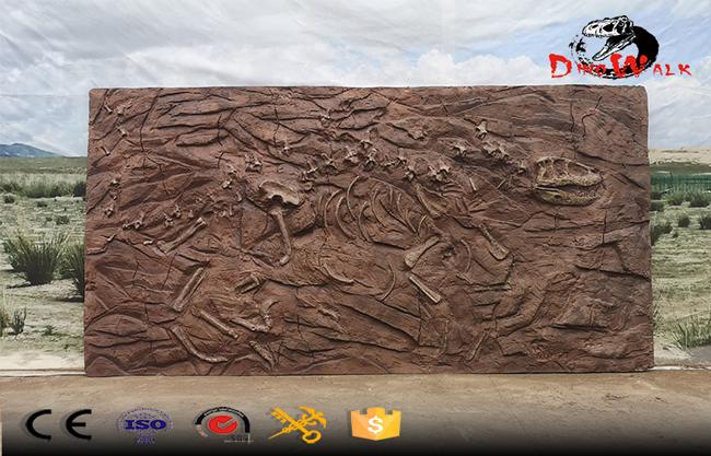 Dinosaur Fossils Archaeological Excavation Site Simulation Replicate