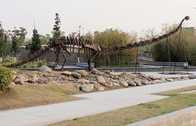 Dinosaur Fossils Replicas