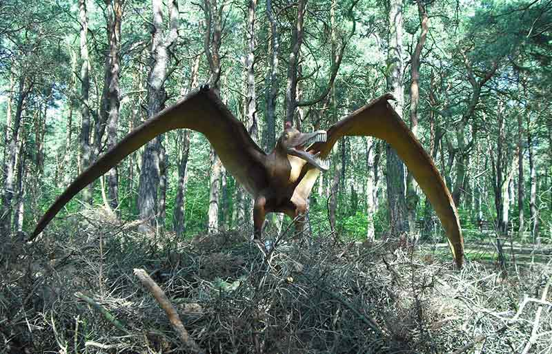 pterosaur simulation statue made out of fiberglass