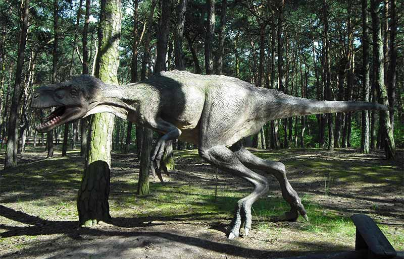 realistic Fiberglass Dinosaur statue for amusement park
