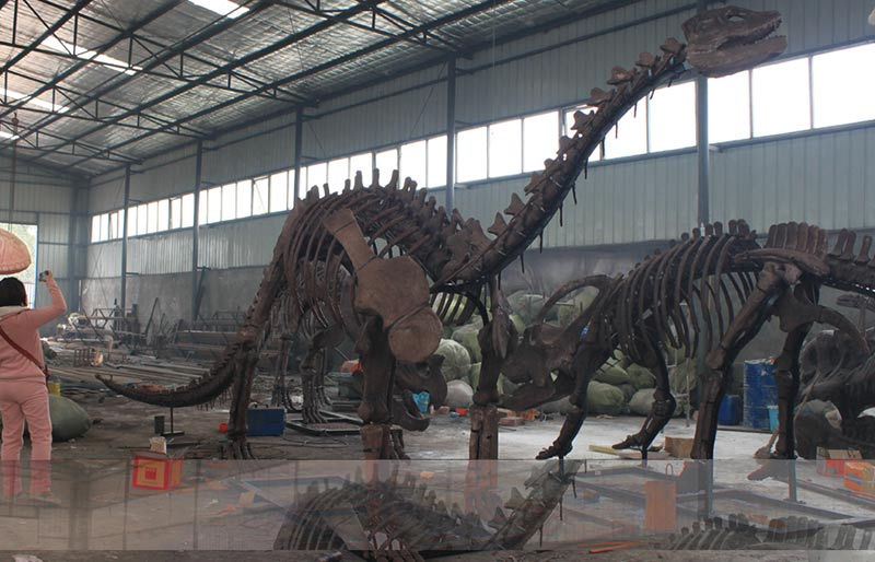 1/1 Revivification dinosaurs Fossils Replicas for Museum