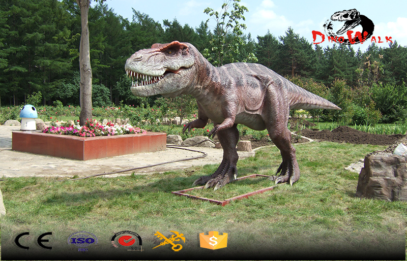 T-Rex medeium size attractive outdoor display dinosaur model