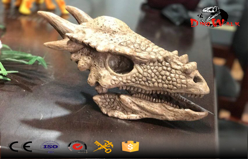 delicate dinosaur fossil head replicate model