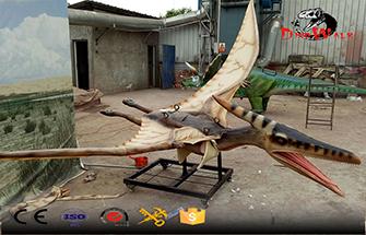 Bird Information During the Dinosaur Period