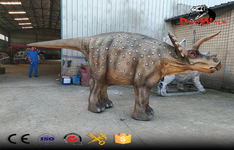 walking with  animatronic Triceratops dinosaur costume